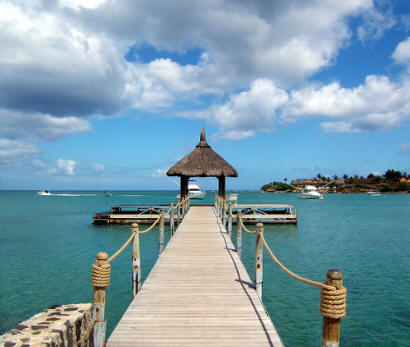 how to find your travel history mauritius